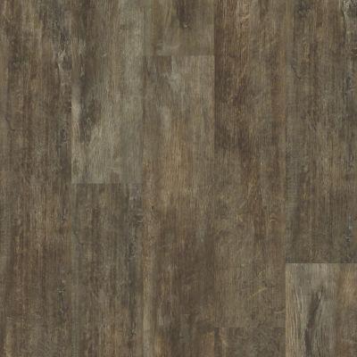 Shaw Floors Vinyl Residential Valore Plus Plank Genoa 00773_2545V