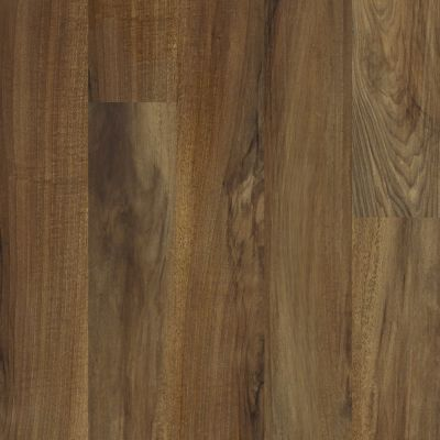 Shaw Floors Resilient Residential Valore Plus Plank Verona 00802_2545V