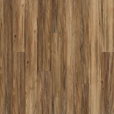 Shaw Floors Resilient Residential Alto Plus Plank Caplone 00676_2576V