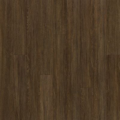 Shaw Floors Resilient Residential Alto Plus Plank Terza Grande 00733_2576V