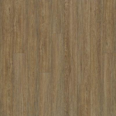 Shaw Floors Resilient Residential Alto Plus Plank Marmolada 00782_2576V