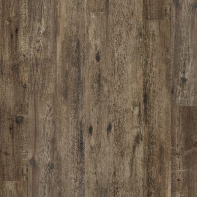 Shaw Floors Resilient Residential Alto HD Plus Novara 00136_2731V