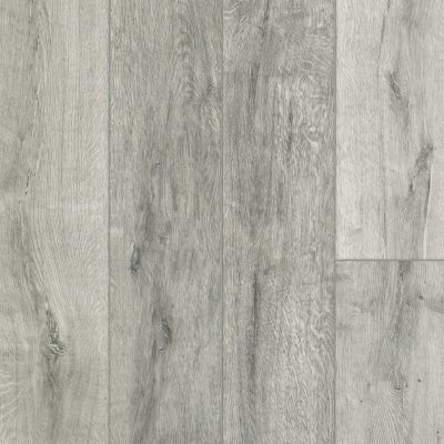 Shaw Floors Resilient Residential Alto HD Plus Tortona 00156_2731V