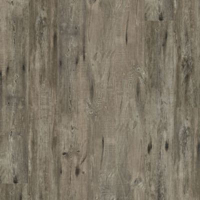Shaw Floors Resilient Residential Alto HD Plus Biella 00552_2731V