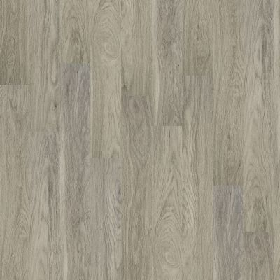 Shaw Floors Resilient Residential Palatino Plus Palace 00508_2801V