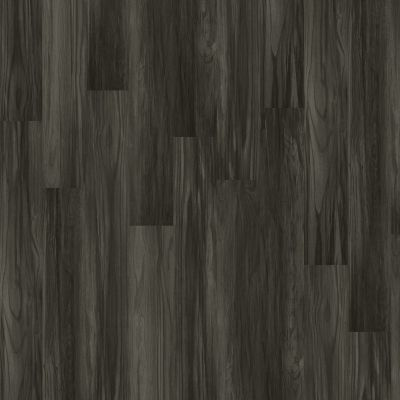 Shaw Floors Vinyl Residential Palatino Plus Grandstand 00902_2801V