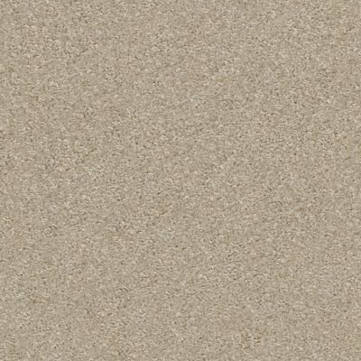 Shaw Floors Your Choice Solid 15.3 Abalone 00153_287SE
