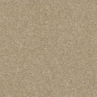 Shaw Floors Your Choice Solid 15.3 Wood Bridge 00700_287SE