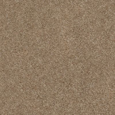 Shaw Floors Your Choice Solid 15.3 Fawns Leap 00702_287SE