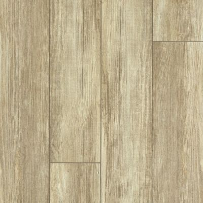 Shaw Floors Resilient Residential Tenacious Hd+ Accent Olive Branch 07082_3011V