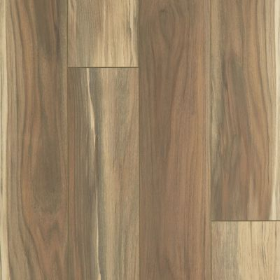 Shaw Floors Resilient Residential Tenacious Hd+ Accent Phoenix 07221_3011V