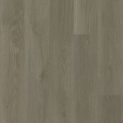 Shaw Floors Resilient Residential Ethereal Oaks Scout 05099_3054V
