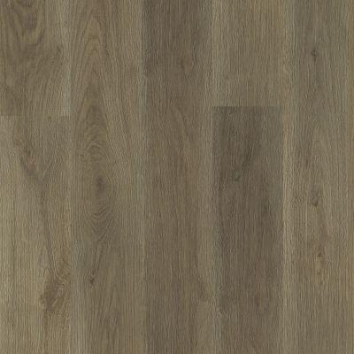 Shaw Floors Resilient Residential Ethereal Oaks Vista 07192_3054V