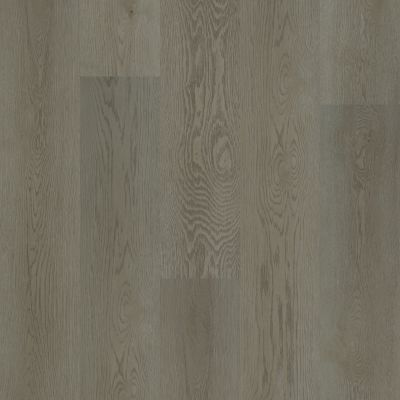 Shaw Floors Resilient Residential Trailblazer Native 05101_3055V