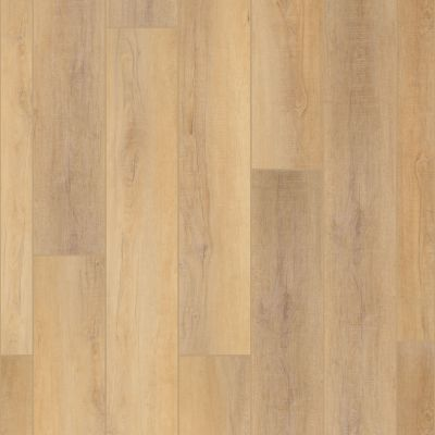 Shaw Floors Resilient Residential Enterprise 9″ Canterbury Elm 02093_345CT