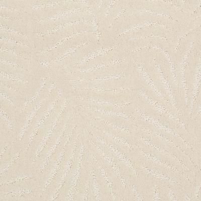 Anderson Tuftex Creative Elegance (floors To Go) Gracious Living Dreamy 00110_500AF
