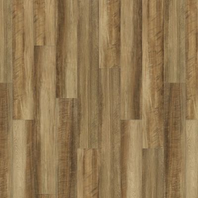 Shaw Floors Resilient Home Foundations Torino Plank Malta 00203_500RG