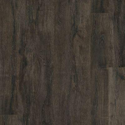 Shaw Floors SFA Largo HD Plus Torino 00793_500SA