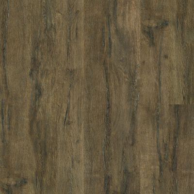 Shaw Floors SFA Largo HD Plus Vercelli 00799_500SA