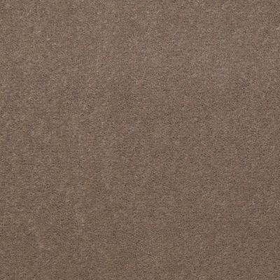 Philadelphia Commercial Emphatic 30 Top Taupe 79742_50178