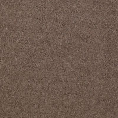 Philadelphia Commercial Emphatic 36 Top Taupe 79742_50179