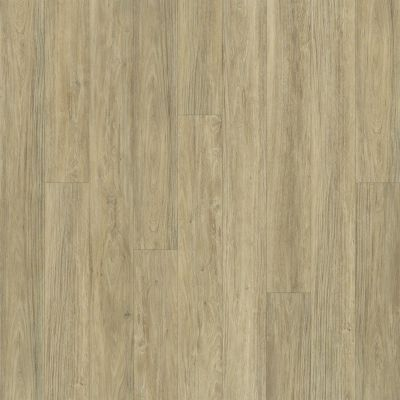 Shaw Floors SFA Largo Plus Carbonaro 00124_502SA