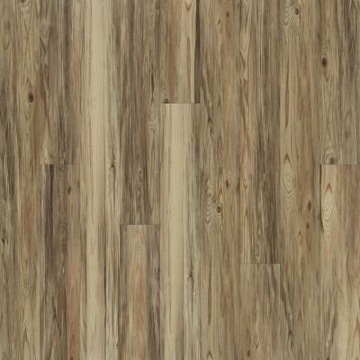 Shaw Floors SFA Largo Plus Taburno 00151_502SA
