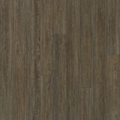 Shaw Floors SFA Largo Plus Miletto 00771_502SA
