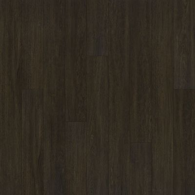 Shaw Floors SFA Largo Plus Viso 00792_502SA