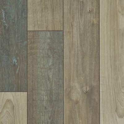 Shaw Floors Resilient Residential Apostleislndhdplus Prateria 07046_503GA