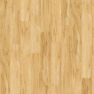 Shaw Floors SFA Casa Plus Luce 00128_503SA
