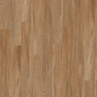 Shaw Floors SFA Bella Plus Duomo 00228_504SA