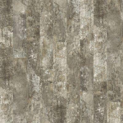 Shaw Floors SFA Bella Plus Siena 00549_504SA