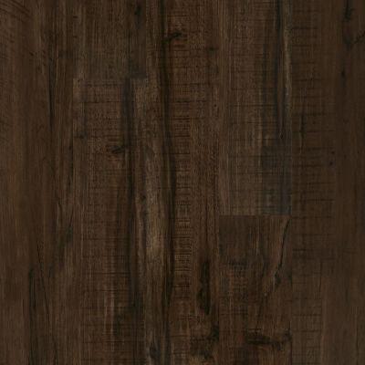 Shaw Floors SFA Mantua Plus Parma 00734_505SA