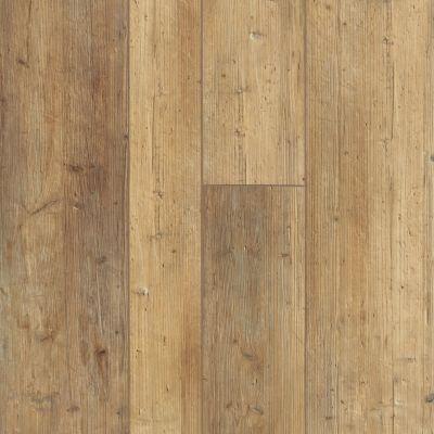 Shaw Floors Resilient Residential Grandmaraismixplus Touch Pine 00690_506GA