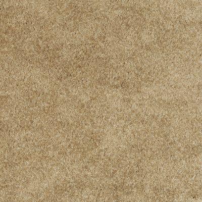 Shaw Floors Shaw Flooring Gallery Lockwood Dried Leaf 00300_5073G