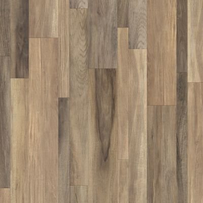 Shaw Floors Resilient Home Foundations Tapestry Mix Plus Campania Jatoba 00131_507RG