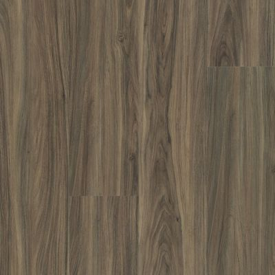 Shaw Floors SFA Paramount 512c Plus Cinnamon Walnut 00150_509SA