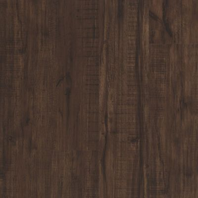 Shaw Floors SFA Paramount 512c Plus Umber Oak 00734_509SA