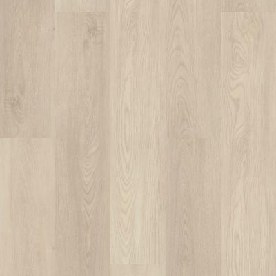 Shaw Floors SFA Paramount 512c Plus Silver Dollar 01055_509SA