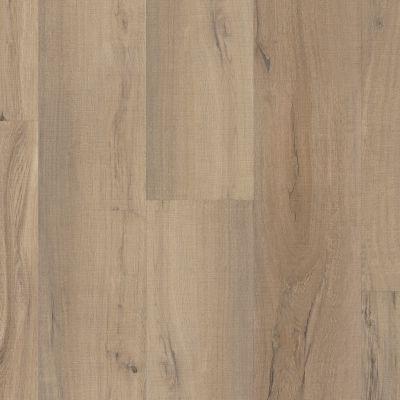 Shaw Floors SFA Paramount 512c Plus Driftwood 01056_509SA