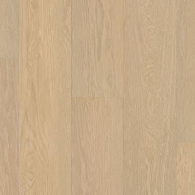 Shaw Floors SFA Paramount 512c Plus Oceanfront 02012_509SA