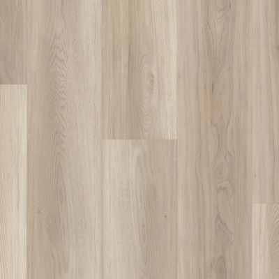 Shaw Floors SFA Paramount 512c Plus Lighthouse 05091_509SA