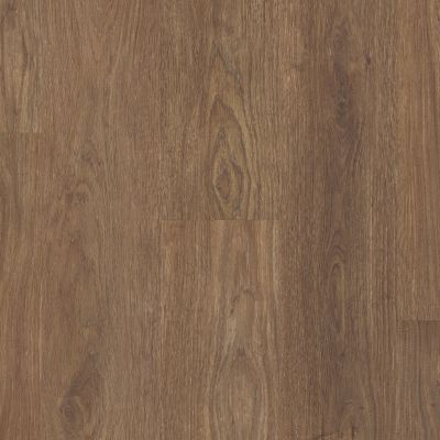 Shaw Floors SFA Paramount 512c Plus Boardwalk 07088_509SA