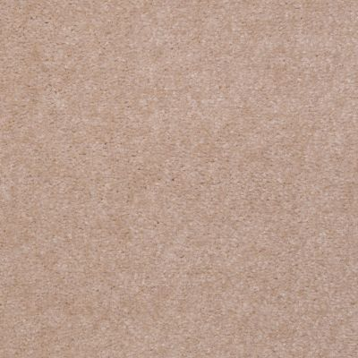 Shaw Floors Hawkeye Shell Beige 65126_51065