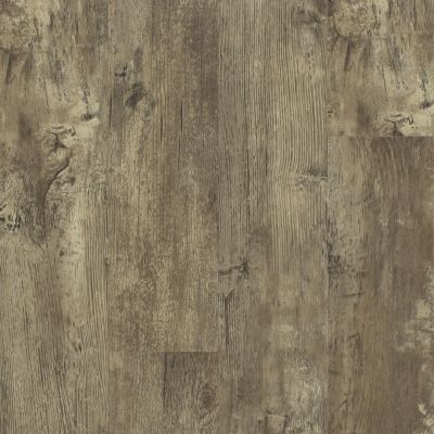 Shaw Floors SFA Paramount 512g Plus Jade Oak 00728_510SA