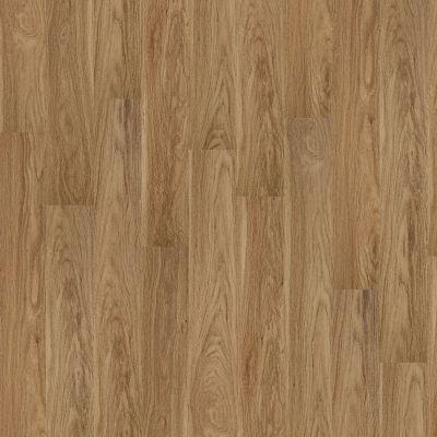 Shaw Floors Vinyl Home Foundations Tracery Plus Museum 00806_512RG