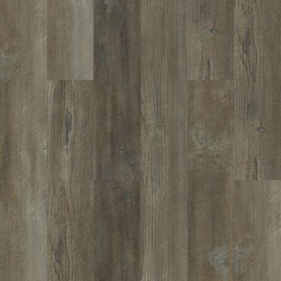 Shaw Floors Resilient Property Solutions Moonlit Pine 720c Plus Antique Pine 05006_514RG