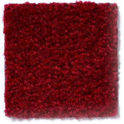 Shaw Floors SMP Punctuate Cranberry 79803_51635