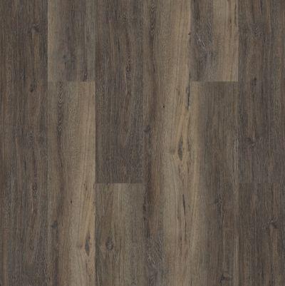 Shaw Floors Resilient Property Solutions White Oak 720c Plus Upland Oak 00795_516RG